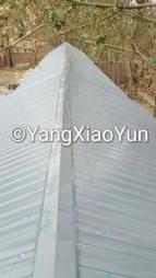 yangs-roof-2