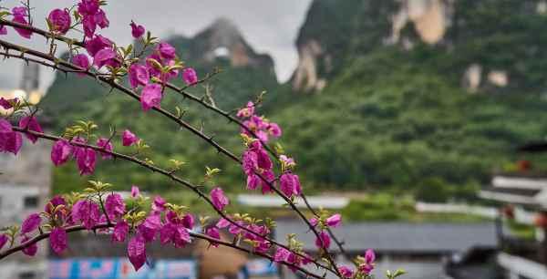 yangshuo-village-inn-rooftop-dining-moon-hill