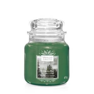 Evergreen Mist Medium 1623724E