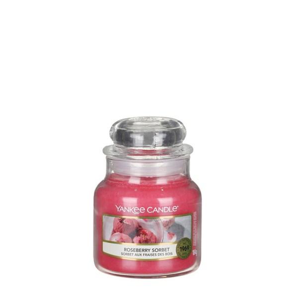 Roseberry-Sorbet-Small