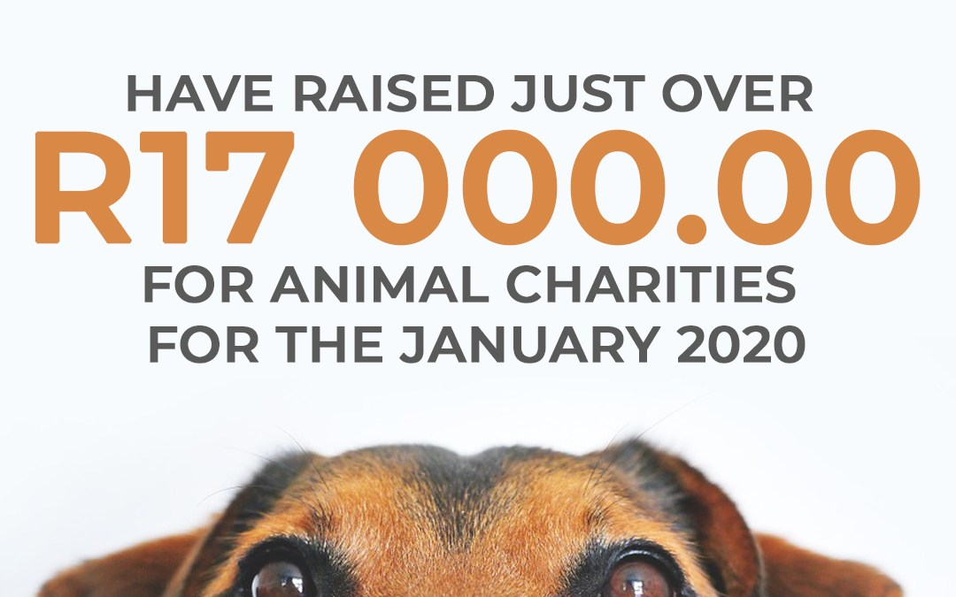 January Monthly Donation to Animal Charities