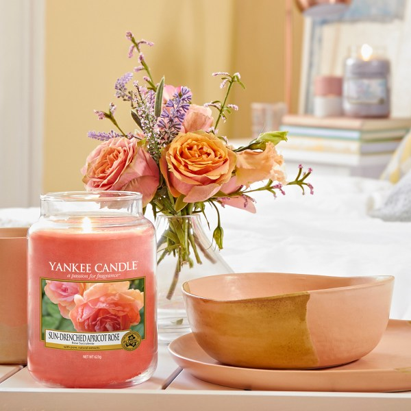 Sun Drenched Apricot Rose Large Jar Display 01