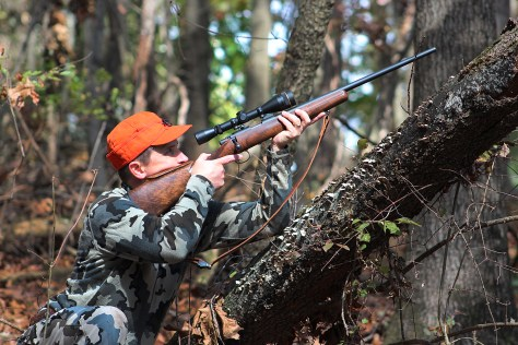 Aiming the Jackson Squirrel Rifle