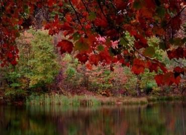 Есенни тапети autumn wallpaper