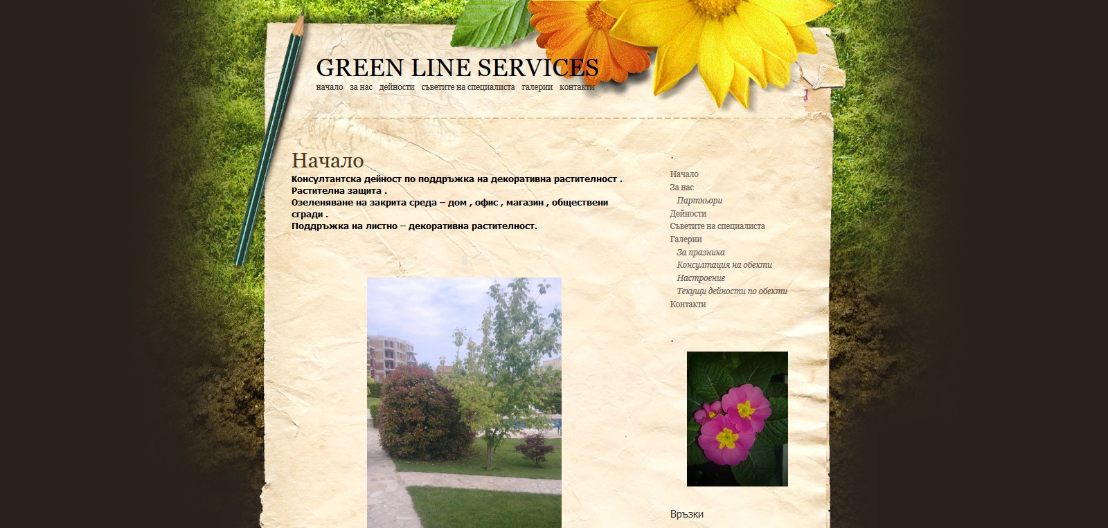 GREEN LINE SERVICES
