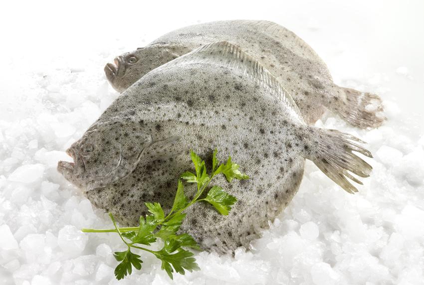 photo-produits-alimentaire-poissons