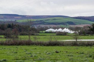 West Somerset Railway (from the chalet)