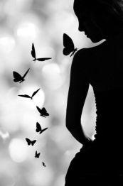 Papillon 92