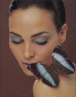 Papillon 54