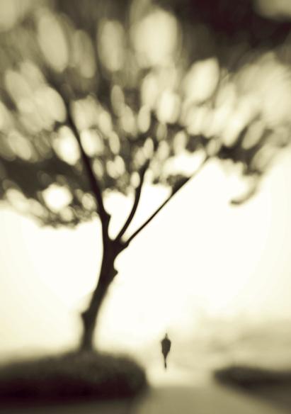 Upon Memory