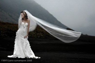 Herworld Brides