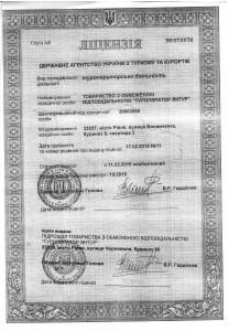 Лицензия Янтур