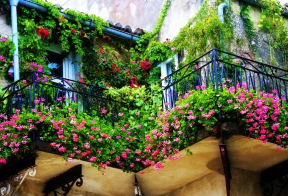 Her balkon, bir çiçek bahçesi olabilir