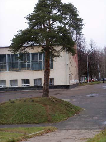 neftestroi-9