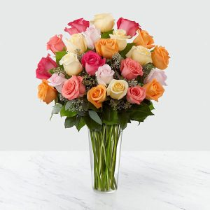 24 Long Stem Multi Colored Roses