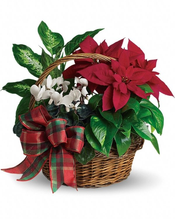 Holiday Homecoming Basket Yara Flowers
