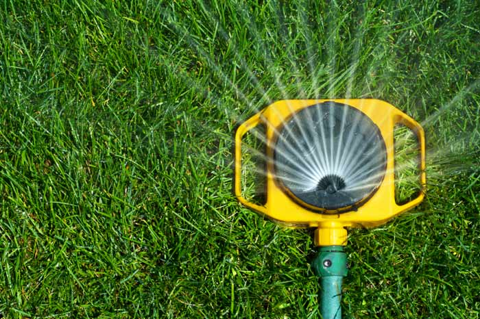 Caring For A Newly Planted Lawn Yard Care