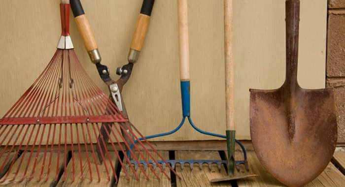 Tools for a good lawn care program
