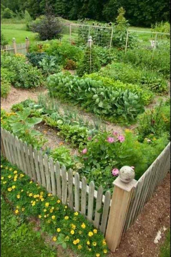 15 Herb & Vegetable Garden Ideas | Yard Surfer on Vegetable Garden Ideas For Backyard id=18132