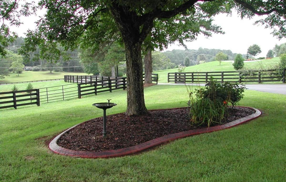 Landscaping Around Trees | Yard Surfer on Backyard Landscaping Ideas With Trees id=63941