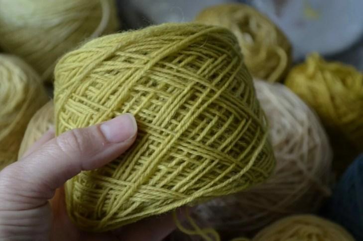 Sock yarn dyed with St John's-wort (Hypericum perforatum)
