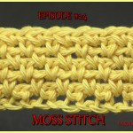 Stitch Gallery & Glossary Episode #24: Moss Stitch