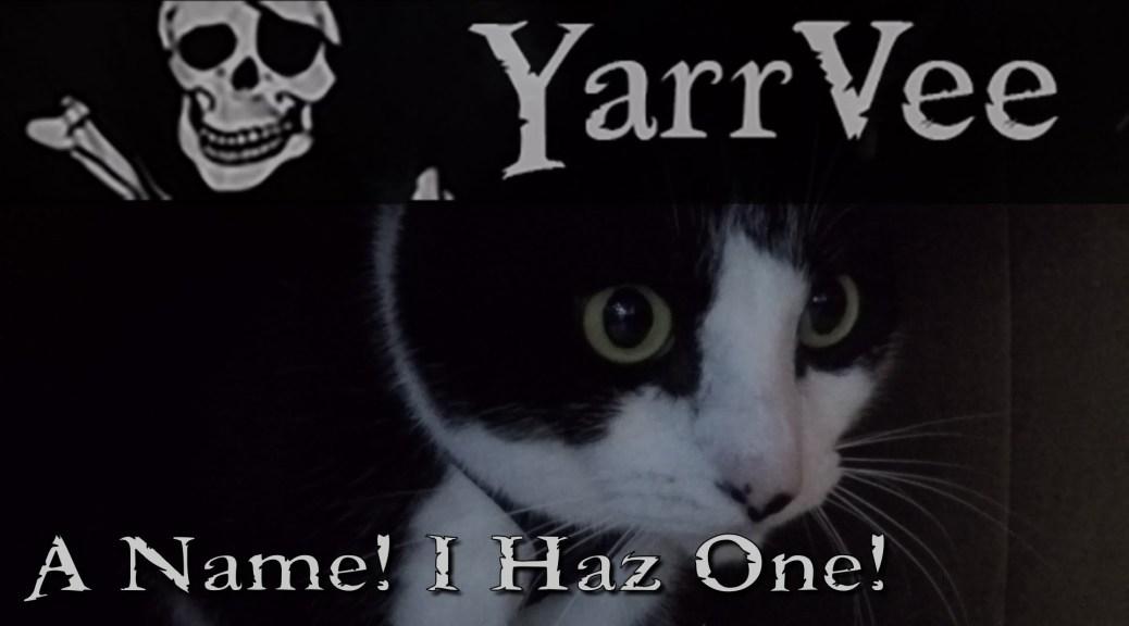 A Name! I haz one!