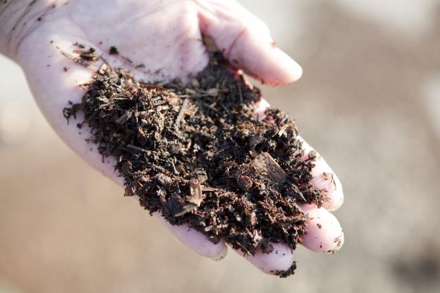 肥料の与え方 追肥のやり方