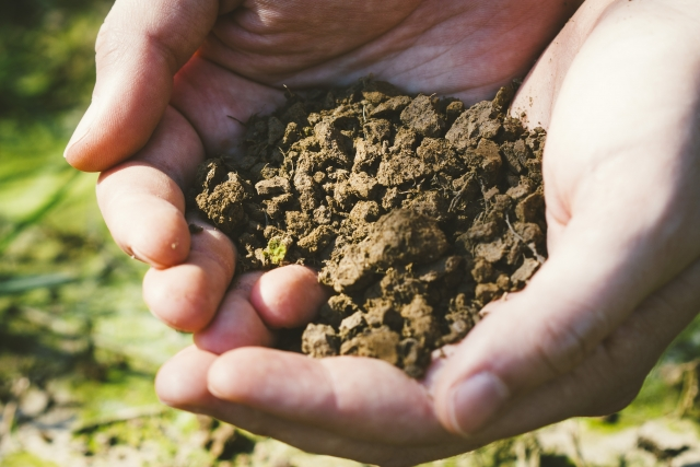 土の状態を管理するアイテム