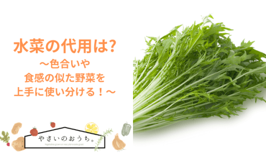 水菜の代用は?色合いや食感の似た野菜を上手に使い分ける!