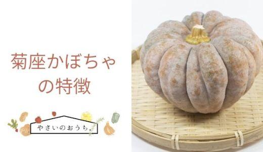 菊座かぼちゃの特徴や旬の時期!味は甘さ控えめしっとり系
