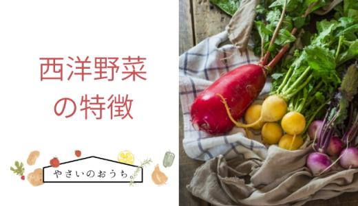 西洋野菜の特徴と種類一覧