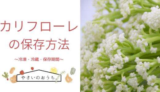 カリフローレ(スティックカリフラワー)の保存方法|冷凍・冷蔵・期間と保存食レシピ!