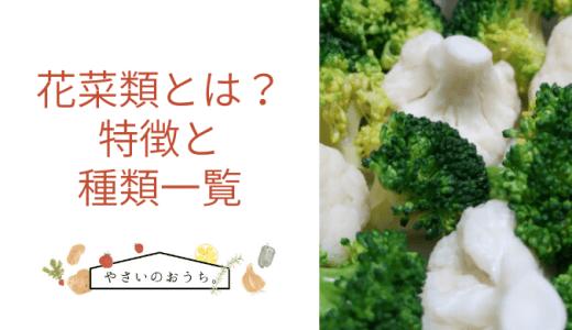 花菜類とは?特徴と種類一覧