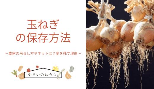 玉ねぎの保存方法 農家の吊るし方やネットは?茎を残す理由