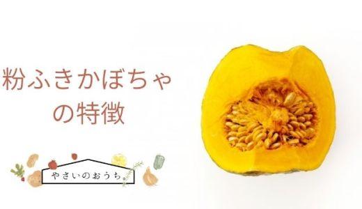 粉ふきかぼちゃの特徴と旬の時期!味は?