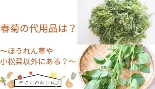 春菊の代用品は?ほうれん草や小松菜以外にも水菜やごぼうもOK!