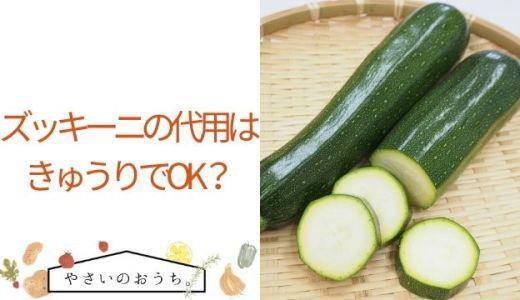 ズッキーニの代用はきゅうりでOK?きゅうり以外の使いやすい野菜も紹介!