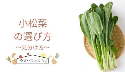 小松菜の選び方のポイントは色!夏と冬の違いは?