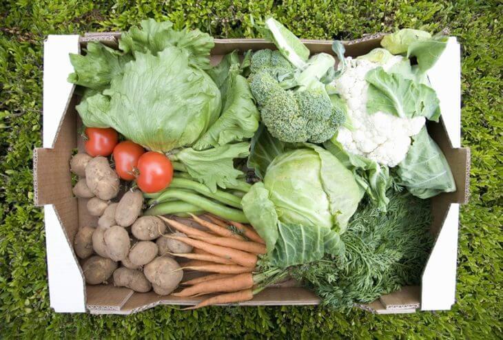 野菜宅配サービスを利用するメリット