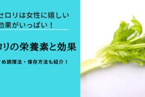 セロリの栄養と効果効能を調査|葉っぱも捨てずに料理するのがおすすめ!