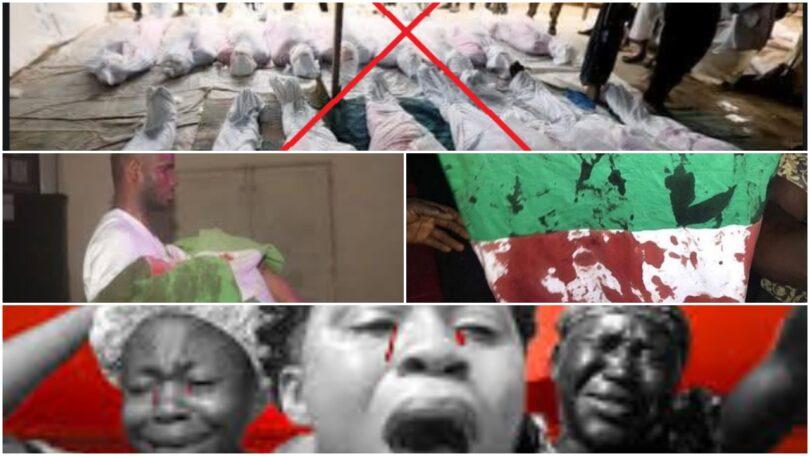 Lekki Massacre FakeNews