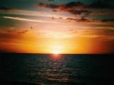 Clear Water & Orange Skies