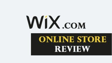 Photo of Wix Online Store Review And FAQs