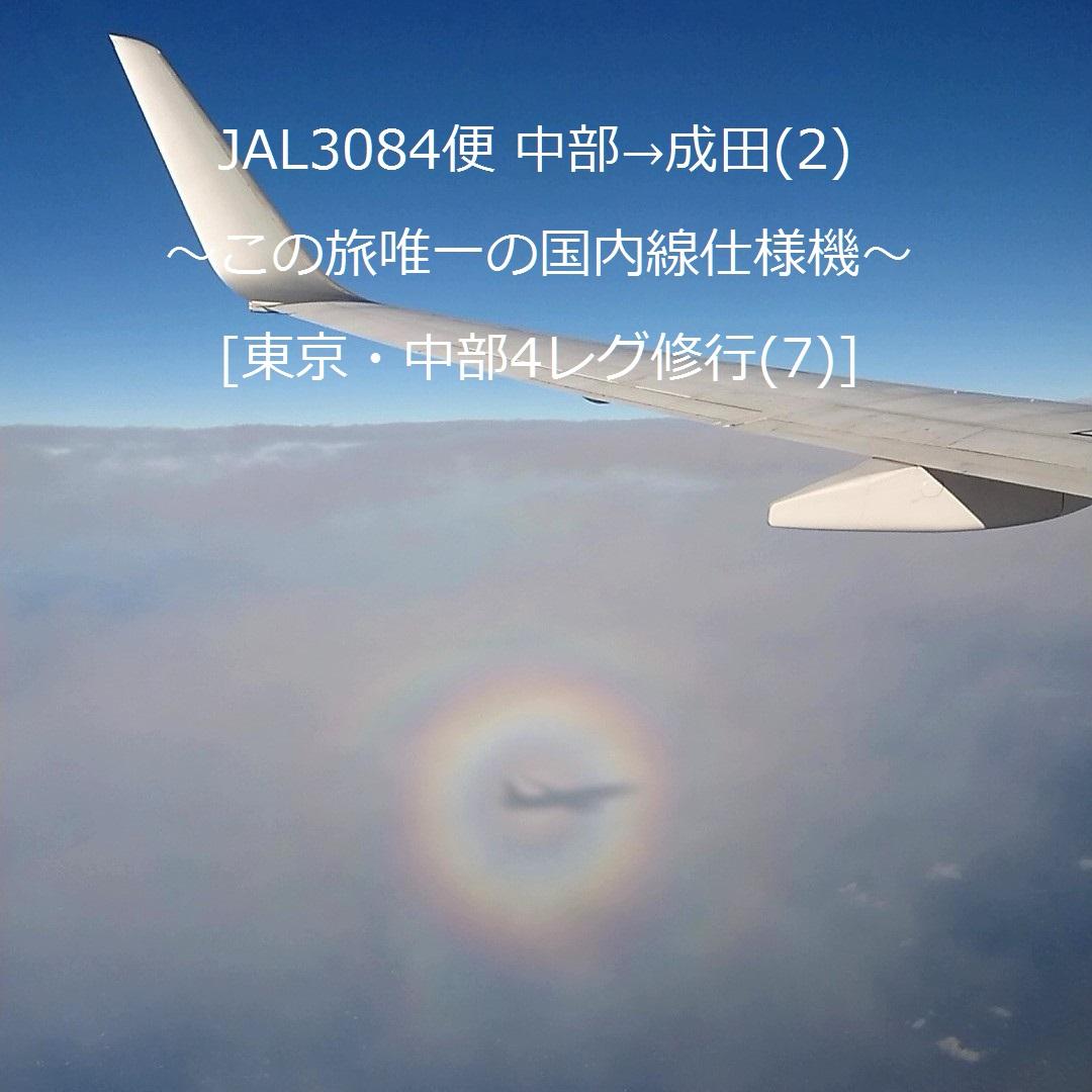 JAL3084便 中部→成田(2) ~この旅唯一の国内線仕様機~ [東京・中部4レグ修行(7)]