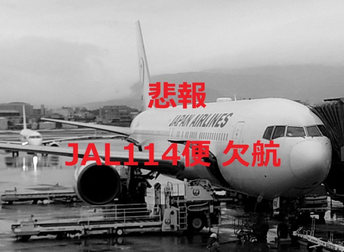[悲報] JAL・JGC修行中に欠航!代替便・乗継便はどうなる?機材不具合の原因は?