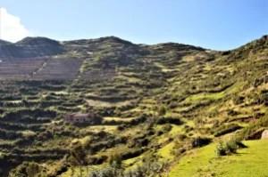 Inca agricultural terraces
