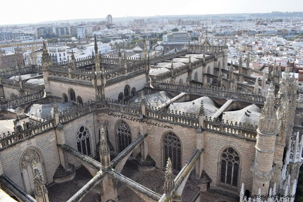 A view of the Seville Cathedral from the Girlada