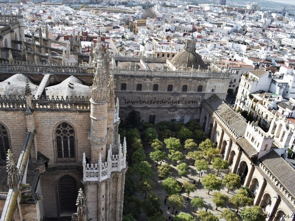 Patio de los Naranjos (Courtyard of the Orange Trees) located on the north side of the Seville Cathedral