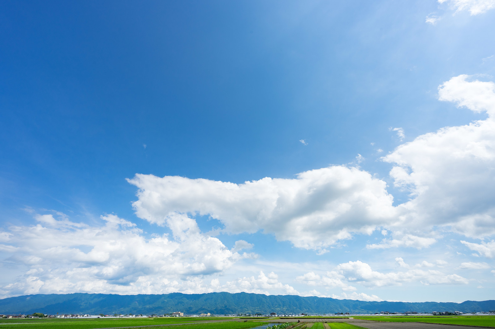 日本の主な平野一覧と要点 - 印刷用テストプリント付き|小学校・中学校の地理